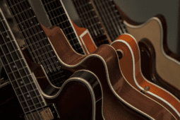 Guitars | Understanding What Makes The Top 11 Types Of Guitar Unique