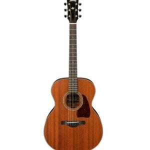 Ibanez Artwood AC240 Acoustic Guitar